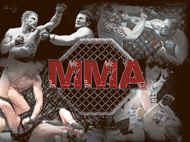 Image result for History of MMA
